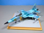 Northrop F5E Aggressor