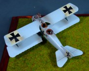 LGF Roland C.II,  Imperial German Air Service, 1:72