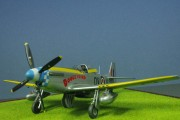 Mustang IVA, 19 Sqn